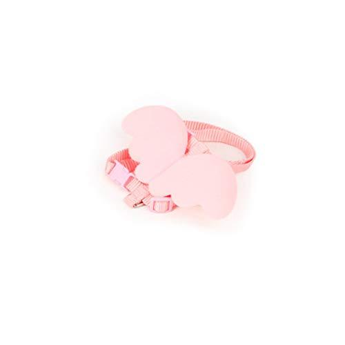 Sunnyflowk Engelsflügelkatze mit Einer rosa Leine