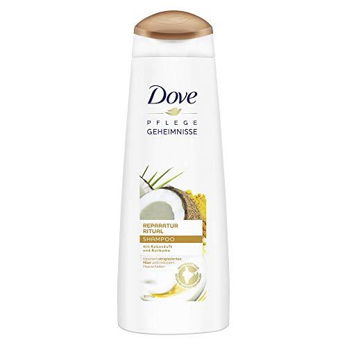 Dove Pflegegeheimnisse Reparatur Ritual Haarpflege Shampoo, (1 x 250 ml)