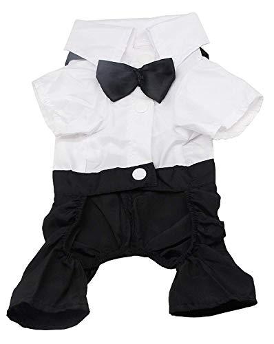 QiCheng & LYS Hund Kleidung Haustier stilvolle Anzug Fliege Kostüm, Hochzeit...