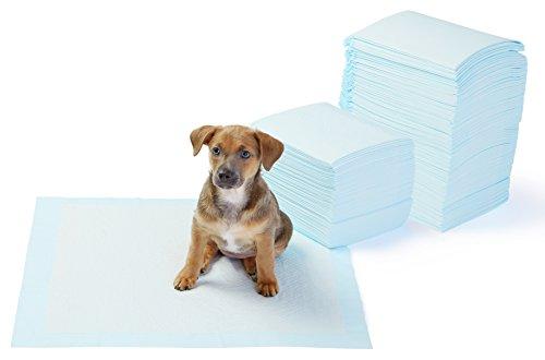 AmazonBasics Puppy Pads Trainingsunterlagen für Welpen, Standardgröße, 150...