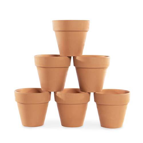 Mini Terrakotta Blumentöpfe - 6er Set | Tontopfpflanzen | Kleiner...