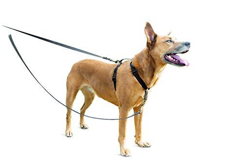 PetSafe Anti-Zieh Hundeleine, Hundeleine Anti-Ziehen, Reflektierende Nylon...