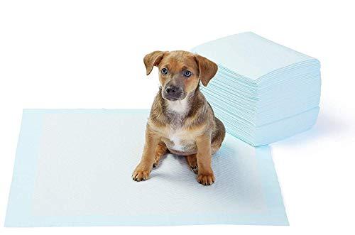 AmazonBasics Puppy Pads Trainingsunterlagen für Welpen, Standardgröße, 50...