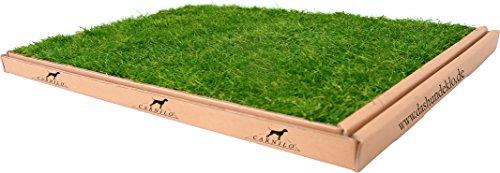 CARNILO - Hundeklo aus echtem Rasen, Welpentoilette, Trainingsunterlage,...