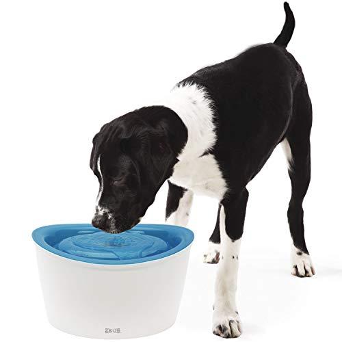 Zeus Trinkbrunnen für Hunde mit 6 l