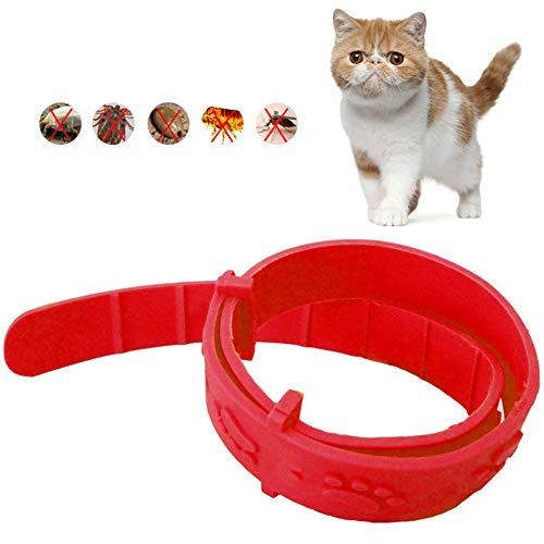 ZUHANGMENG Katzenhalsband, verstellbares Katzen-Anti-Floh-Halsband, sichere...