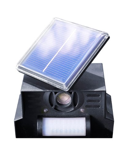 Royal Gardineer Katzenschreck Solar: Hunde-, Katzen- und Vogelschreck TS-707.l,...