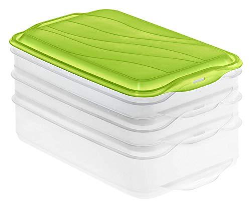Rotho Rondo Foodcenter 3-teilige Vorratsdose, Kunststoff (BPA-frei), grün /...