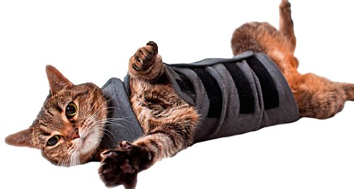 Thundershirt Beruhigungsweste – Katzenmantel, Größe S, grau