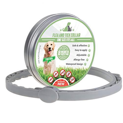 Xinshang Verstellbares Floh- und Zeckenhalsband für Hunde/Katzen,...