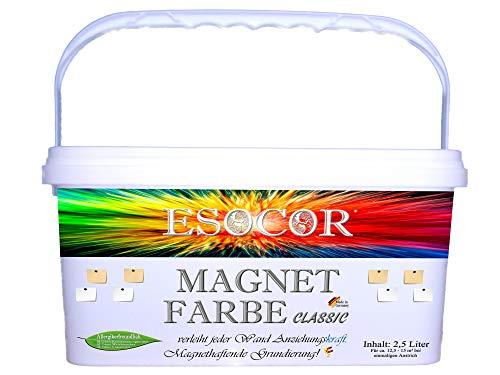2,5 Liter ESOCOR MAGNETFARBE CLASSIC + 2 Pin Magnete – allergikerfreundlich...