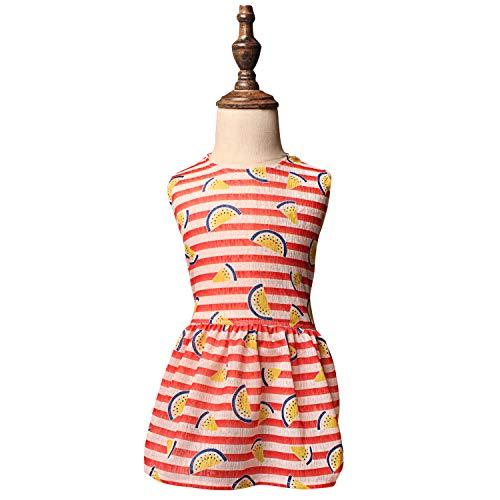 TONY HOBY Cool und Bunte Wassermelonen-Kleid für Hunde und Katzen,...