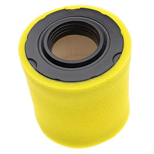 vhbw Filterset (1x Papierfilter, 1x Schaumfilter) passend für Briggs & Stratton...