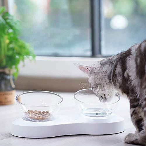 ZXD Tilted Doppel Katze Schalen mit Ansitz Transparent Nicht-Spill Feeder Cat...