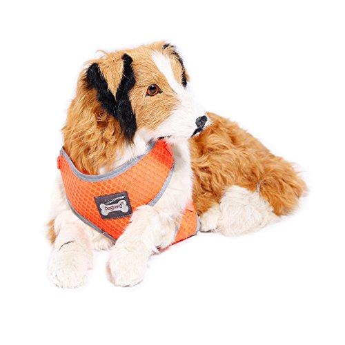 Anladia Hund Halsband Hundegeschirr Brustgeschirr Softgeschirr Haustier...