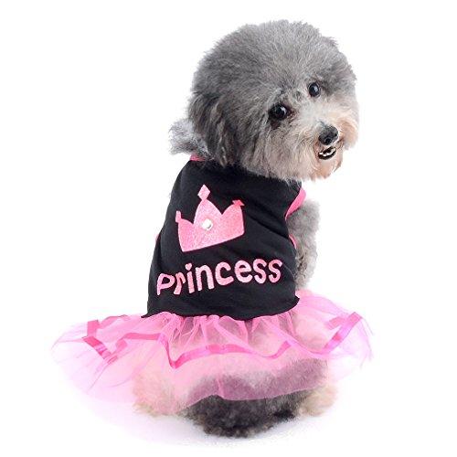 Ranphy Kleiner Hund Katze Rock Chihuahua Kleidung für Mädchen Krone Prinzessin...