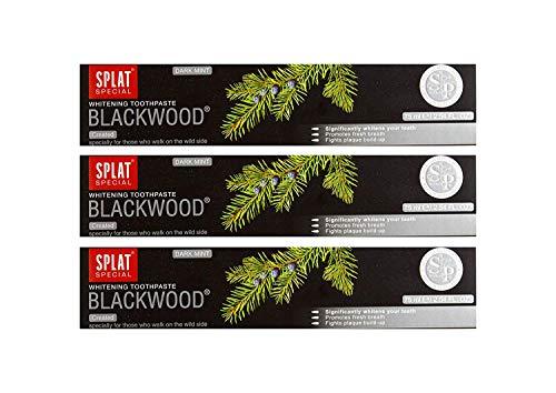 3x SPLAT BLACKWOOD fluoridfreie Kohle Zahnpasta blutstillend und...