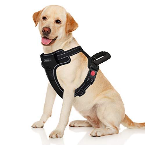 Petacc Hunde Hundegeschirr Grosse Mittelgroße Hunde Verstellbares...
