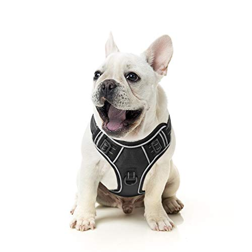 HEELE Hundegeschirr Reflektierend Hundegeschirr Hundesport Gepolstert...