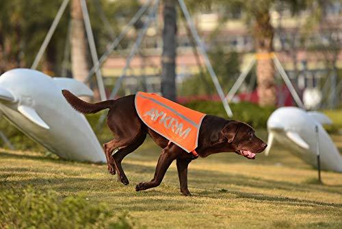 AYKRM Sicherheitsweste für Hunde, hohe Sichtbarkeit, fluoreszierend …...