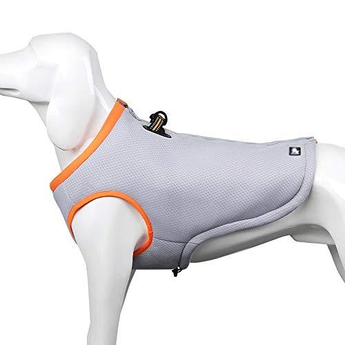 LUGJ Hundehalsbänder, Leder Pet Hundegeschirr, Ziehen Trainings Chest Harness,...
