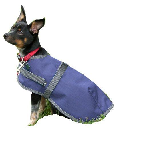 High Spirit Hund Regen Coat, Mädchen, 266NY16, Marineblau/Grau, 16-Inch