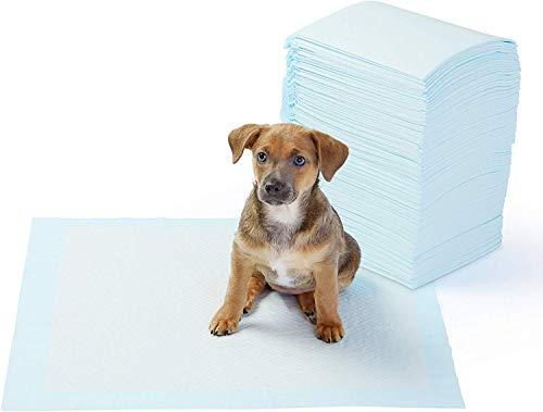 AmazonBasics Puppy Pads Trainingsunterlagen für Welpen, Standardgröße, 100...