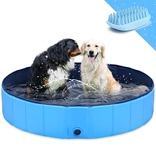 GoStock Hundepool Schwimmbecken Faltbarer Hund Planschbecken Swimmingpool...