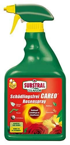 Celaflor Schädlingsfrei Careo Rosenspray, anwendungsfertiges Mittel mit...