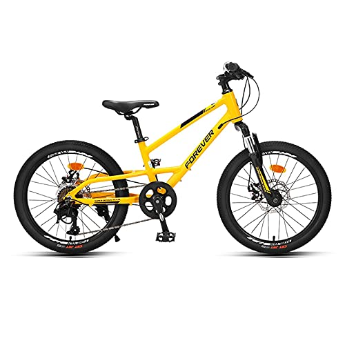 HEZHANG 20-Zoll-Kinder-Fahrrad, 8...