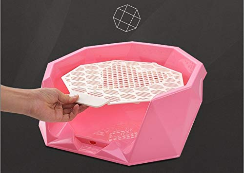 Dulan Toy Organizer-Box, Hundetoilette Hund Spritzwassergeschütztes Potty...