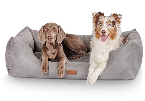 Knuffelwuff Hundebett Dreamline Hundekorb Hundesofa Hundekissen Hundekörbchen...
