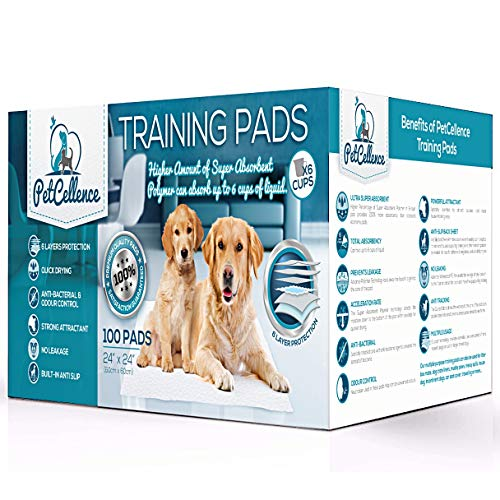 PetCellence Trainingsunterlagen für Welpen Hunde (100 Stück) | Welpenhaus Zug...