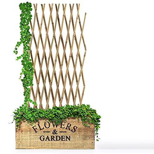 Floordirekt Bambus Rankgitter für Garten, Balkon & Terrasse | Individuell...