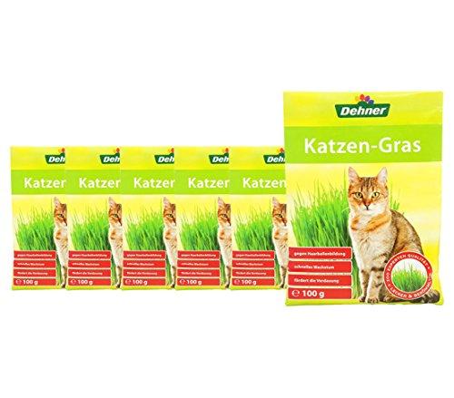 Dehner Saatgut Katzengras, 6 Stück (600 g)