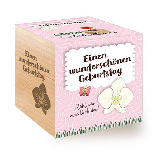 Feel Green Celebrations Ecocube, Orchideenbaum, Holzwürfel Mit Lasergravur...