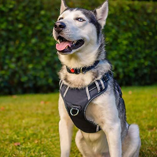 PENGDA Hundegeschirr Große und mittlere Hunde Anti-Zug-Geschirr Sicherheit...