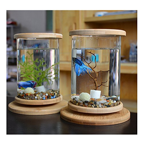 KLSD Kreative LED Desktop Mini Aquarium Desktop-Micro-Zylinder Rotierenden...