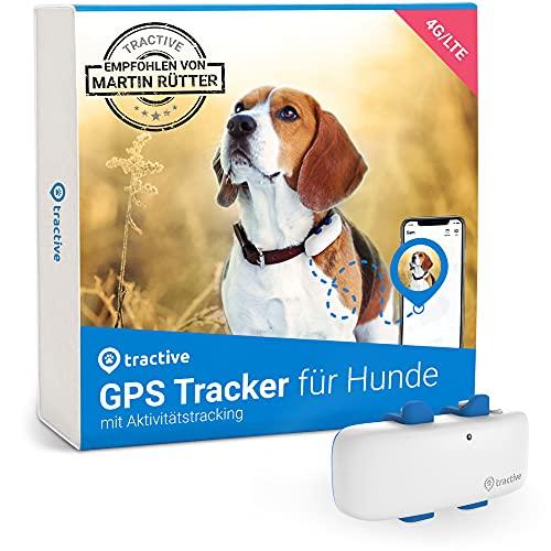 Tractive GPS Tracker für Hunde (2021). Empfohlen von Martin Rütter. Immer...
