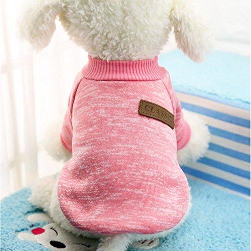 OUYAWEI Hundepullover, warme Kleidung, Winter, weiche Katzen-Jacke mit Kapuze,...