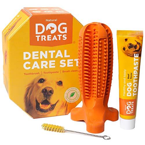 Natural Dog Treats Hundezahnbürste und Zahnpasta mit Rindfleischgeschmack,...