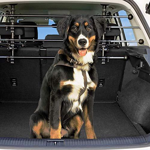Dekolona  Auto Hundegitter - Mit gratis Transporttasche - Optimaler Halt Dank...