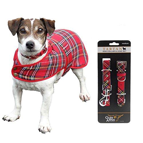 The Scotland Kilt Company Hund Halsband & Leine Set - Königlich Stewart mit...