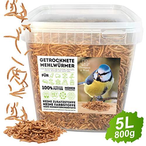 Thompson&Wood Mehlwürmer getrocknet 5Liter Eimer, optimales Zusatz Futter für...