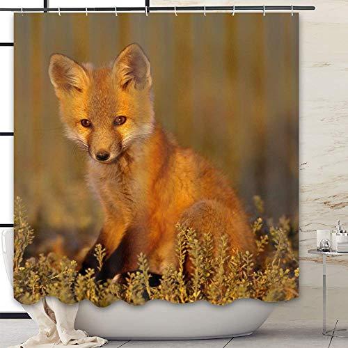 HAOZI Stoff-Duschvorhang, für Master, Gäste, Kinder, Fuchs Gras, sitzen...