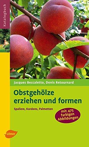 Obstgehölze erziehen und formen: Spaliere, Kordons, Palmetten (Katalogbuch)