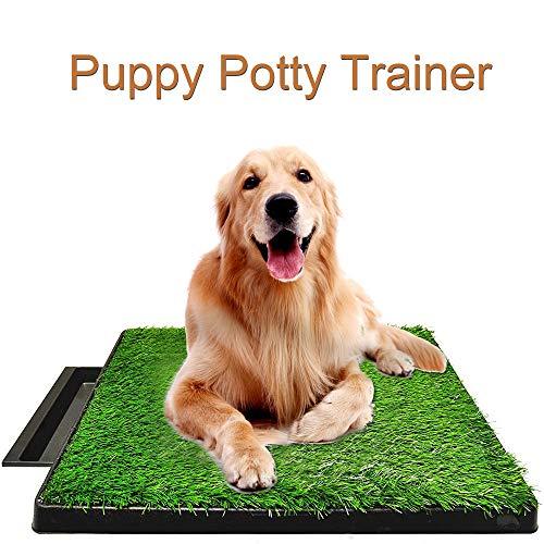 Allright Welpentoilette Hundetoilette Hunde Training Rasenmatte für Kleine...