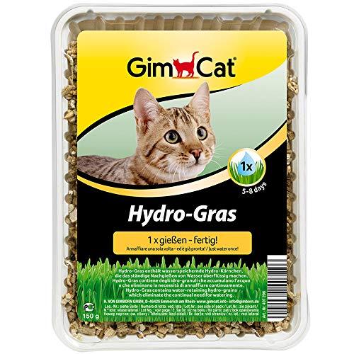 GimCat Hydro-Gras - Frisches Katzengras aus kontrolliertem Feldanbau in nur 5...