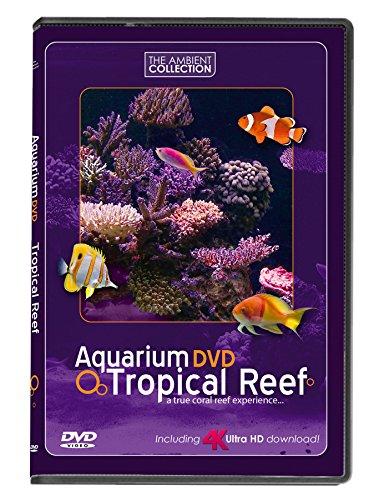 Aquarium DVD | TROPISCHES RIFF mit 4K ULTRA HD Download mit Natürlichen...