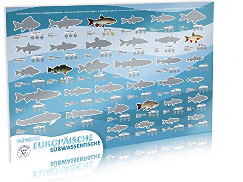 VAULTERIUS Angler Fischposter zum Rubbeln mit europäischen Süßwasserfischen...